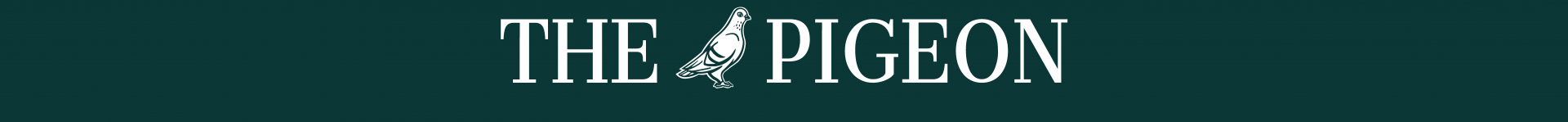 cropped-pigeon-banner-small-5.png
