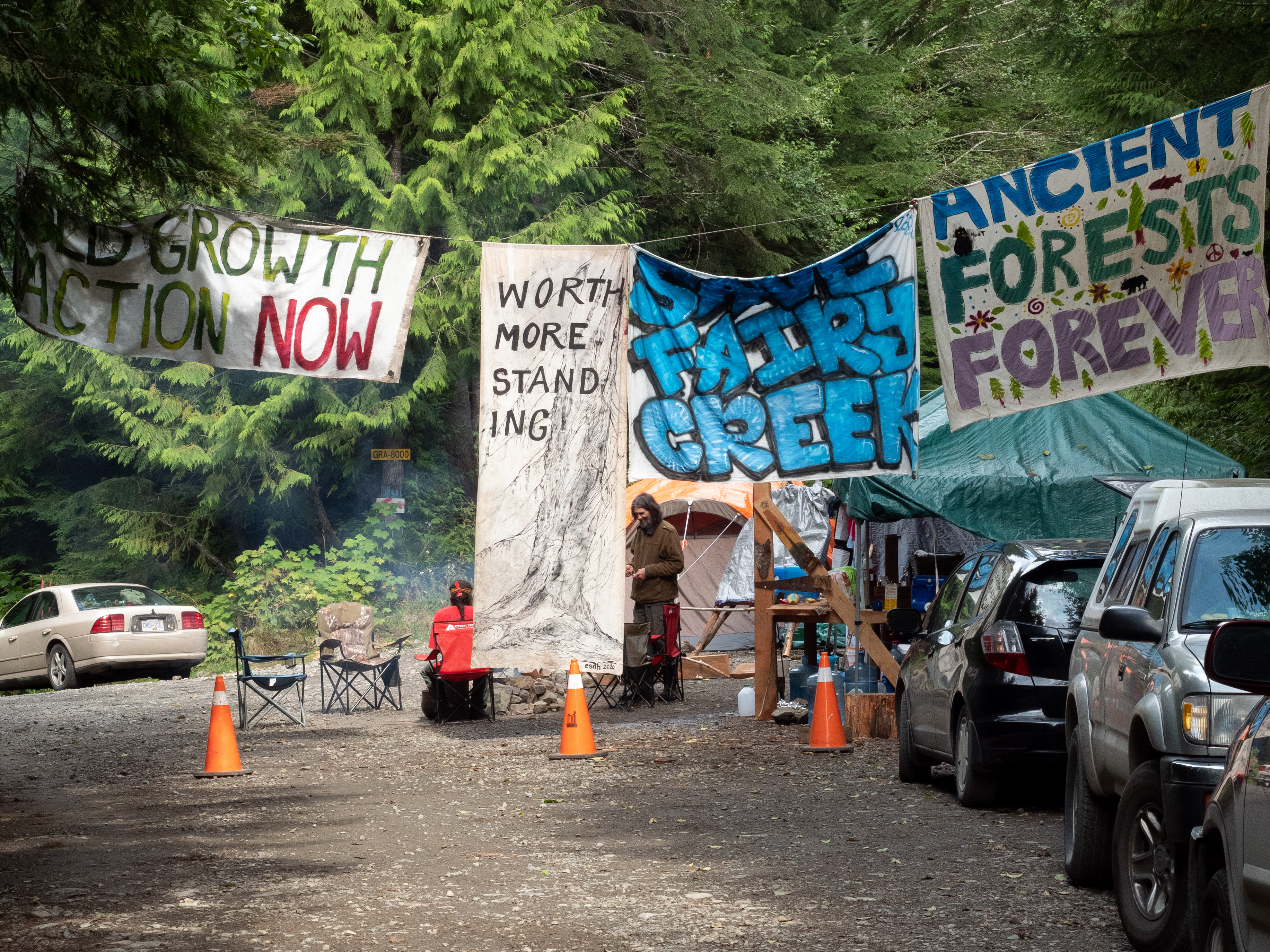 """Protestors block the road into Fairy Creek on Vancouver Island. Cars, seats, and tents line the side of the roads. Signs hanging from rope read, """"Old growth action now,"""" """"worth more standing,"""" """"save fairy creek,"""" and """"ancient forests forever."""""""