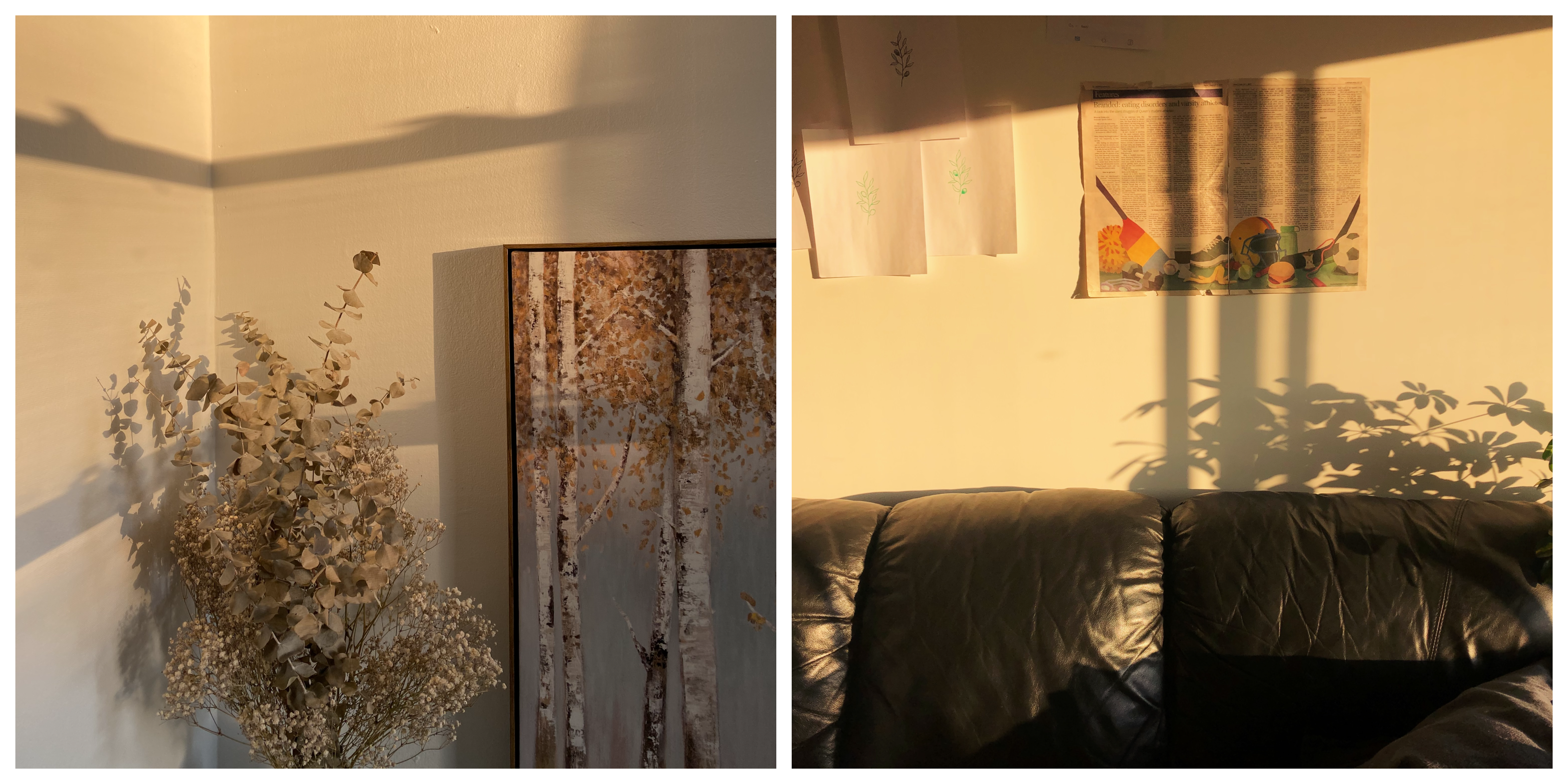 Side-by-side images from Maggie's living room. On the left, a brown dried bouquet leans against a painting. On the right, a newspaper is taped to the wall above a black couch.